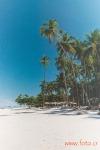 Isla Tortuga (35mm)